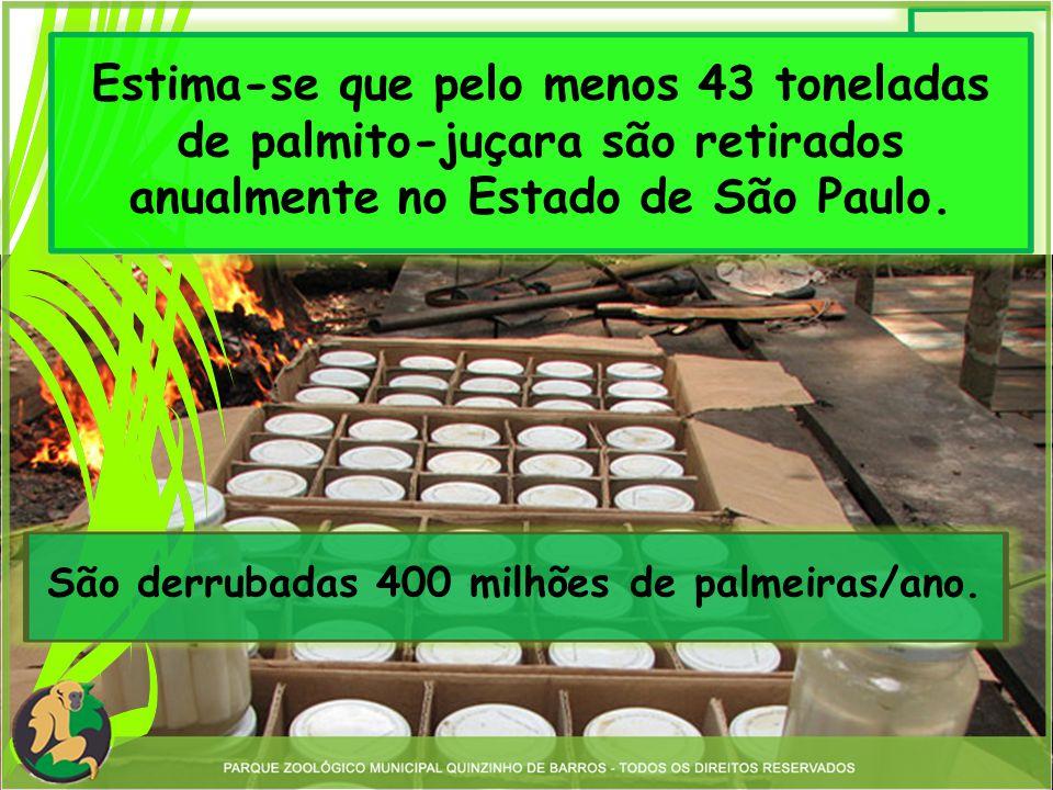 29 toneladas extraídas ilegalmente por ano somente no Vale do Ribeira.