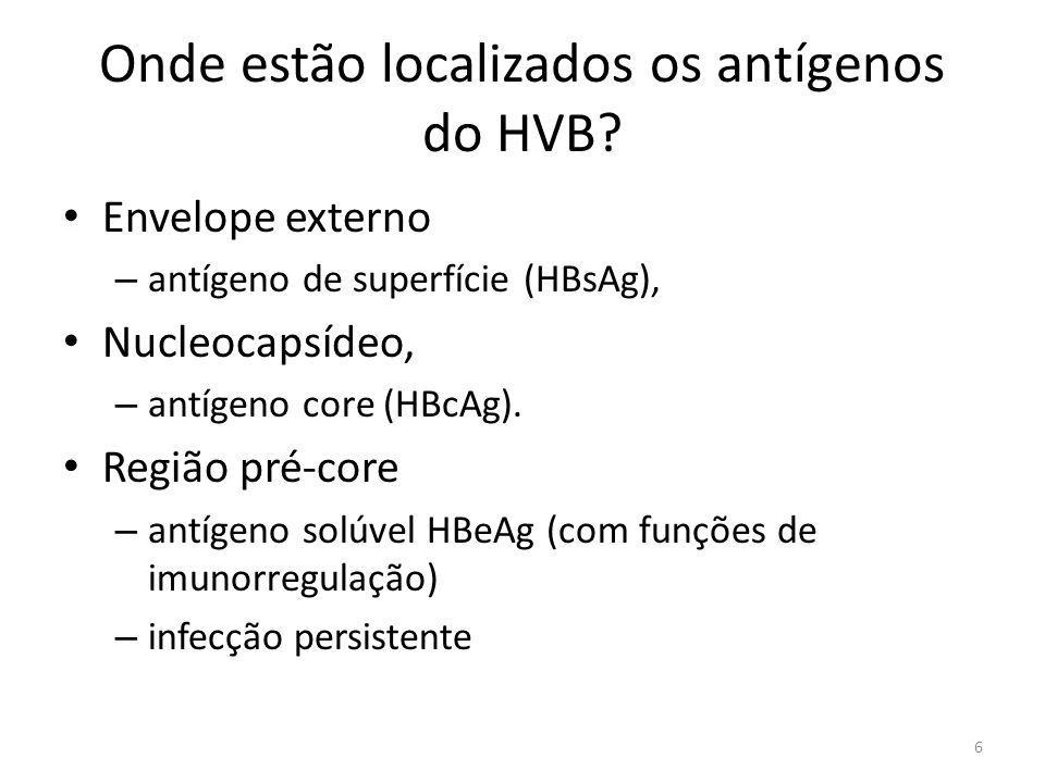 Como a OMS divide as regiões quanto a prevalência de HBV.