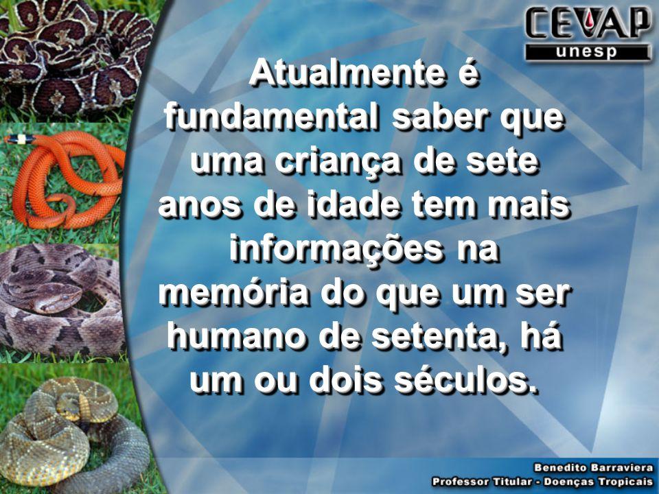 Atualmente é fundamental saber que uma criança de sete anos de idade tem mais informações na memória do que um ser humano de setenta, há um ou dois séculos.