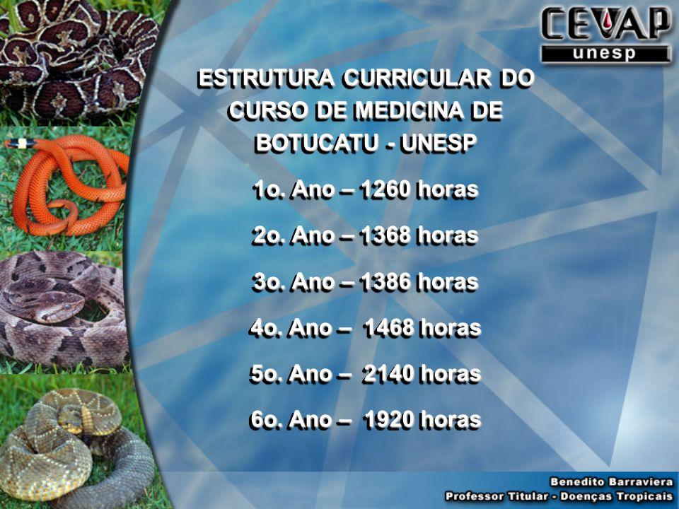 ESTRUTURA CURRICULAR DO CURSO DE MEDICINA DE BOTUCATU - UNESP 1o.