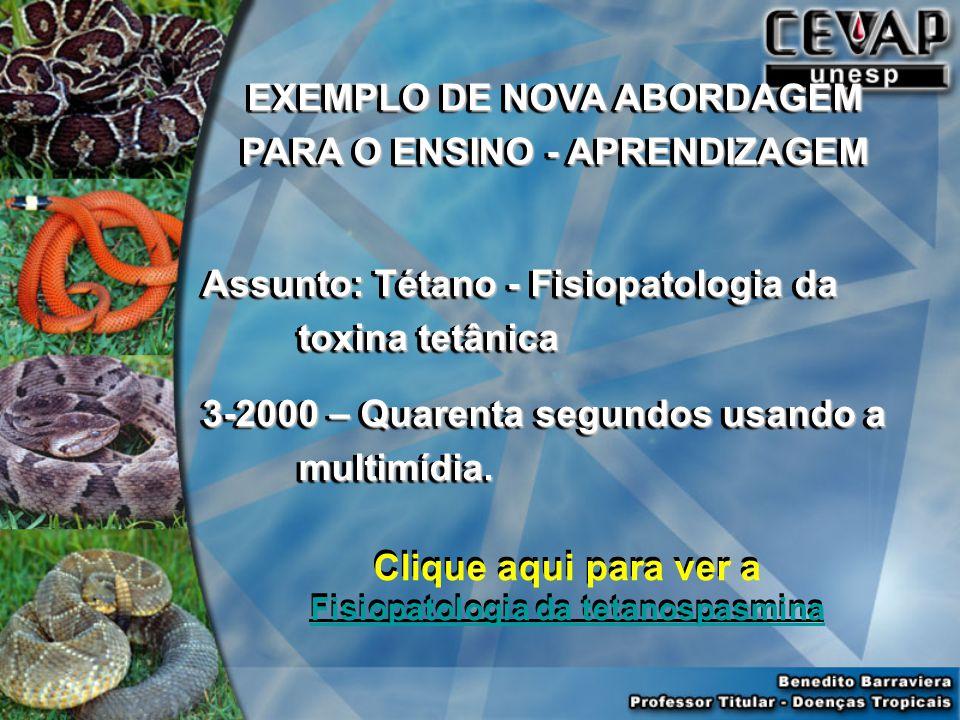 EXEMPLO DE NOVA ABORDAGEM PARA O ENSINO - APRENDIZAGEM Assunto: Tétano - Fisiopatologia da toxina tetânica 3-2000 – Quarenta segundos usando a multimídia.