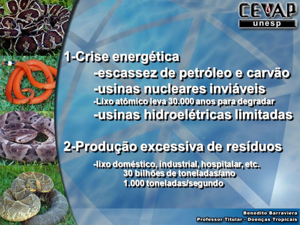 1-Crise energética -escassez de petróleo e carvão -usinas nucleares inviáveis -Lixo atômico leva 30.000 anos para degradar -usinas hidroelétricas limitadas 2-Produção excessiva de resíduos -lixo doméstico, industrial, hospitalar, etc.