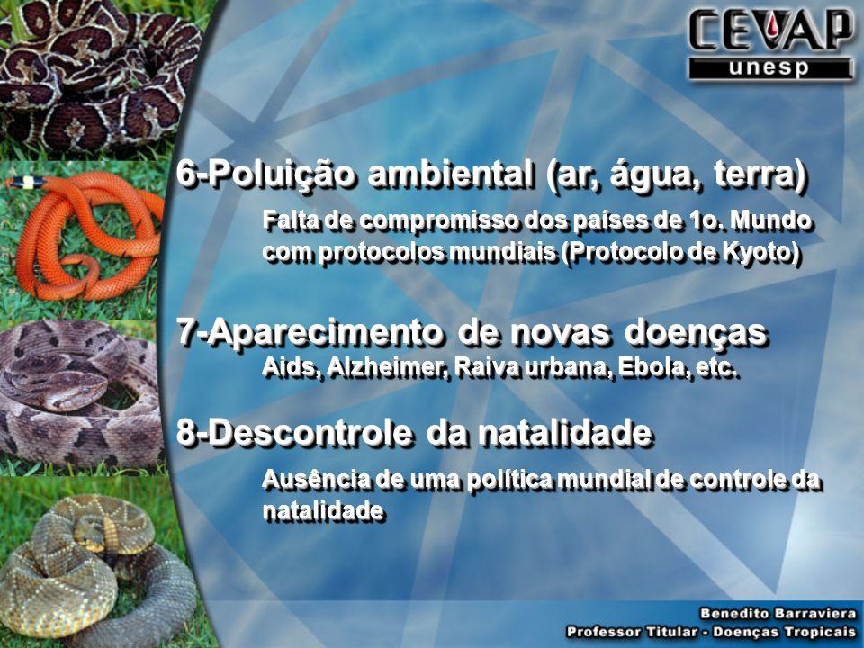 6-Poluição ambiental (ar, água, terra) Falta de compromisso dos países de 1o.