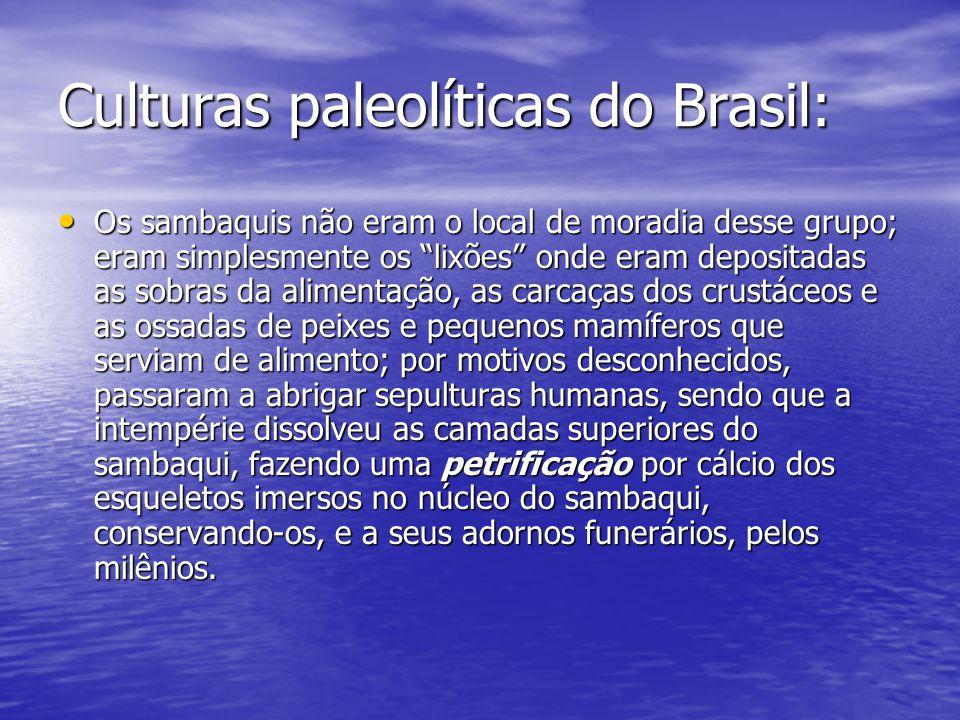 Culturas paleolíticas do Brasil: Os sambaquis não eram o local de moradia desse grupo; eram simplesmente os lixões onde eram depositadas as sobras da