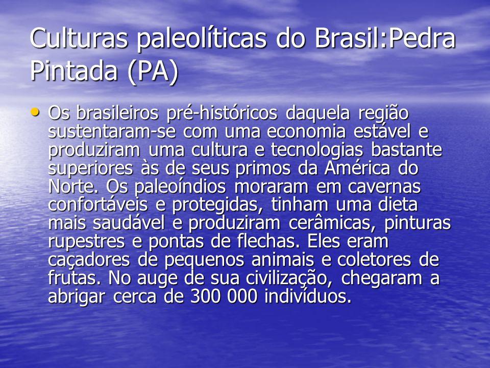 Culturas paleolíticas do Brasil:Pedra Pintada (PA) Os brasileiros pré-históricos daquela região sustentaram-se com uma economia estável e produziram u