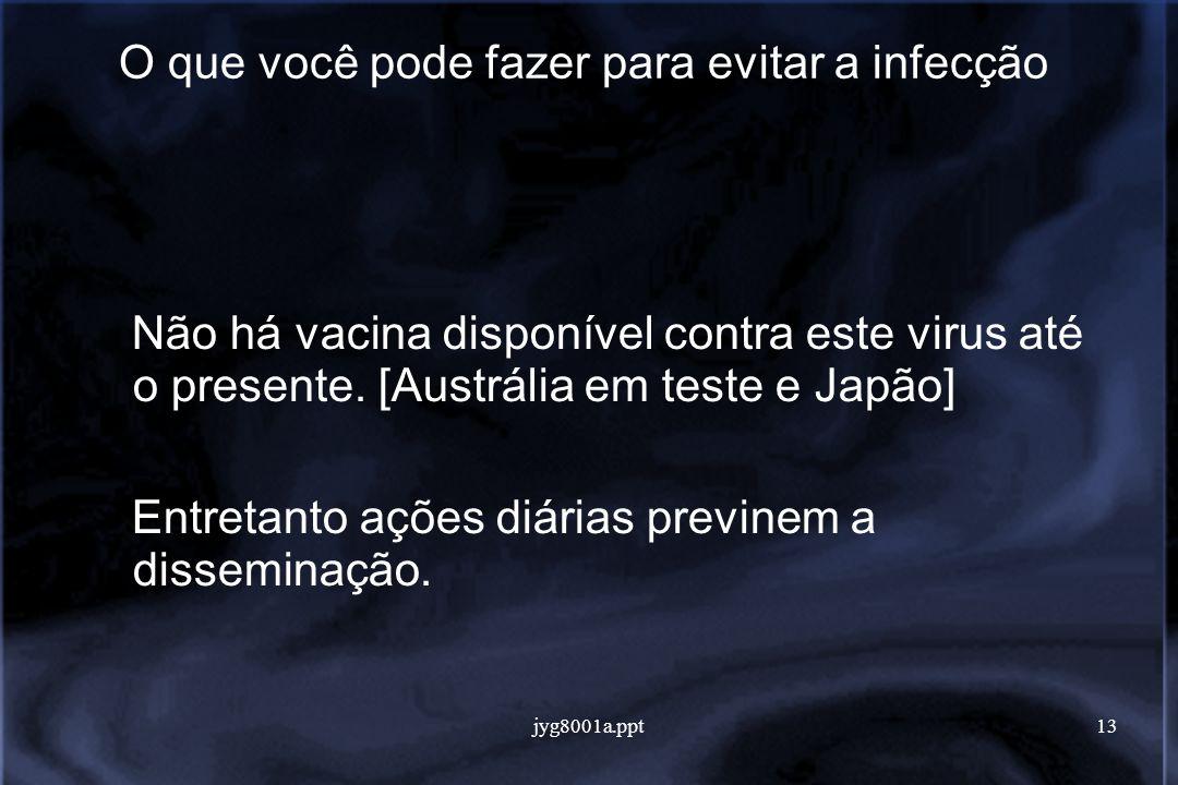 jyg8001a.ppt13 O que você pode fazer para evitar a infecção Não há vacina disponível contra este virus até o presente.