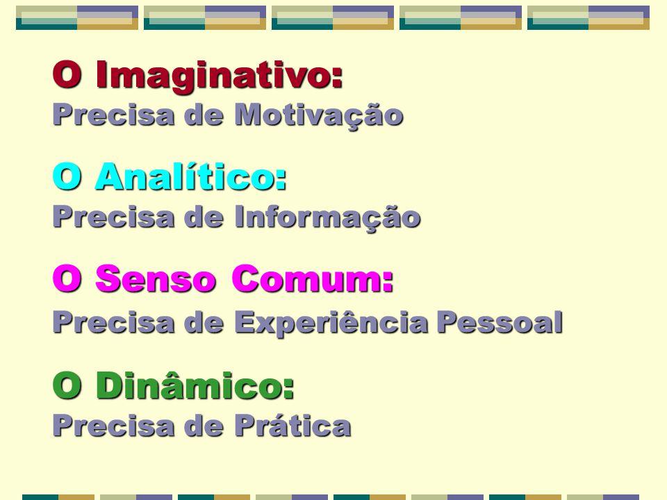 O Imaginativo: Precisa de Motivação O Analítico: Precisa de Informação O Senso Comum: Precisa de Experiência Pessoal O Dinâmico: Precisa de Prática