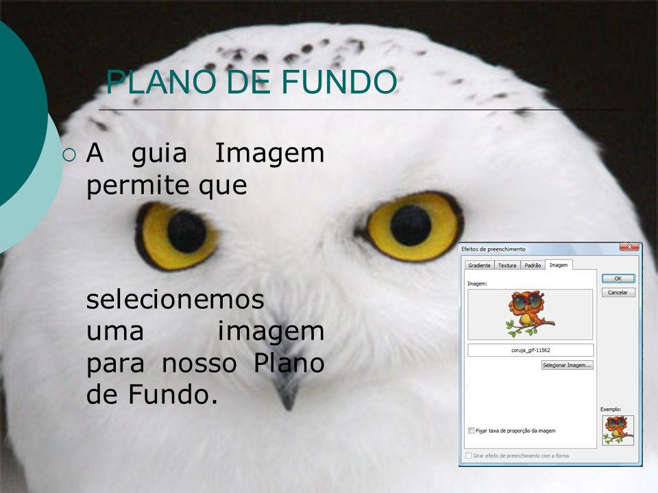 PLANO DE FUNDO A guia Imagem permite que selecionemos uma imagem para nosso Plano de Fundo.