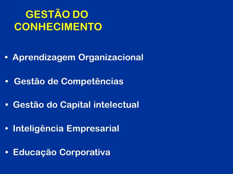 Aprendizagem Organizacional GESTÃO DO CONHECIMENTO Gestão de Competências Educação Corporativa Gestão do Capital intelectual Inteligência Empresarial