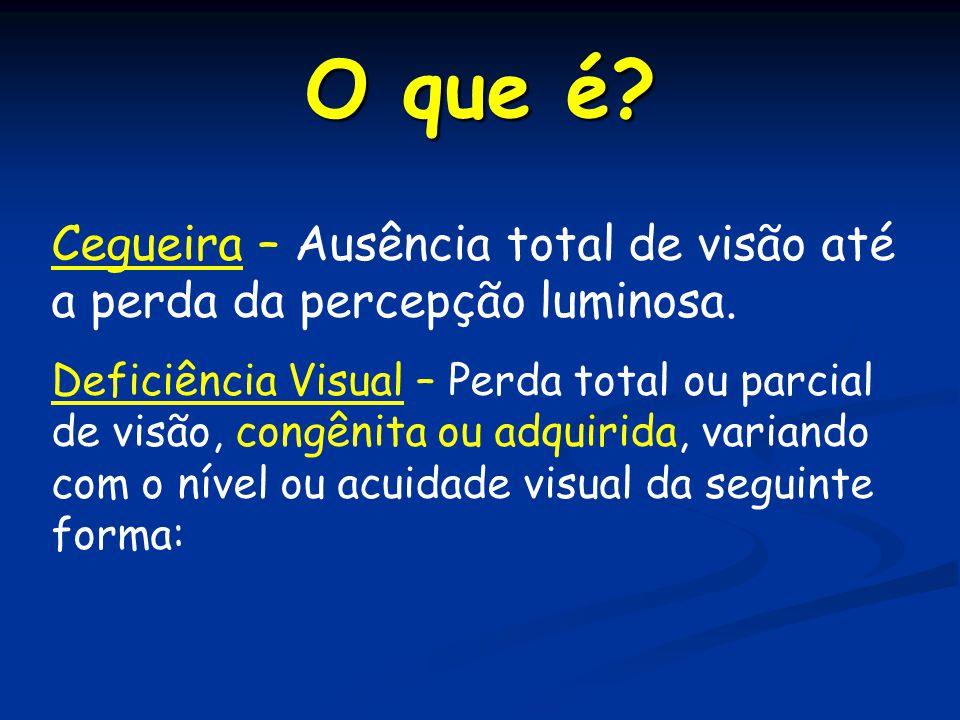 O que é? Cegueira – Ausência total de visão até a perda da percepção luminosa. Deficiência Visual – Perda total ou parcial de visão, congênita ou adqu