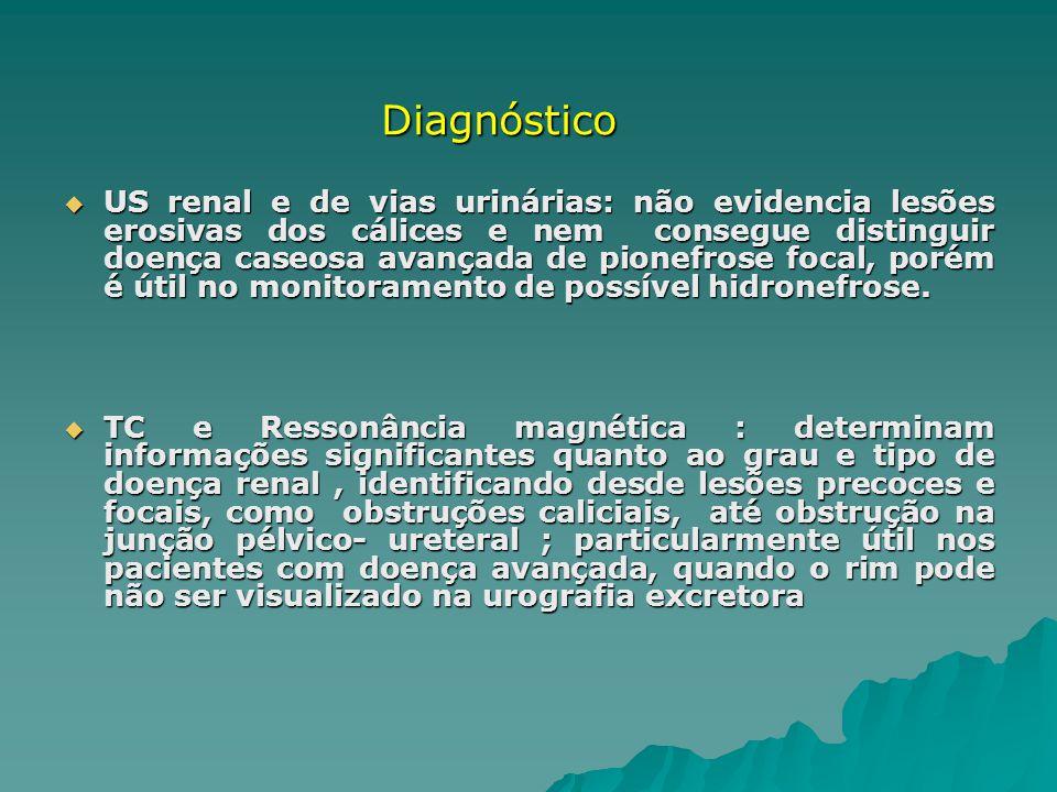 US renal e de vias urinárias: não evidencia lesões erosivas dos cálices e nem consegue distinguir doença caseosa avançada de pionefrose focal, porém é