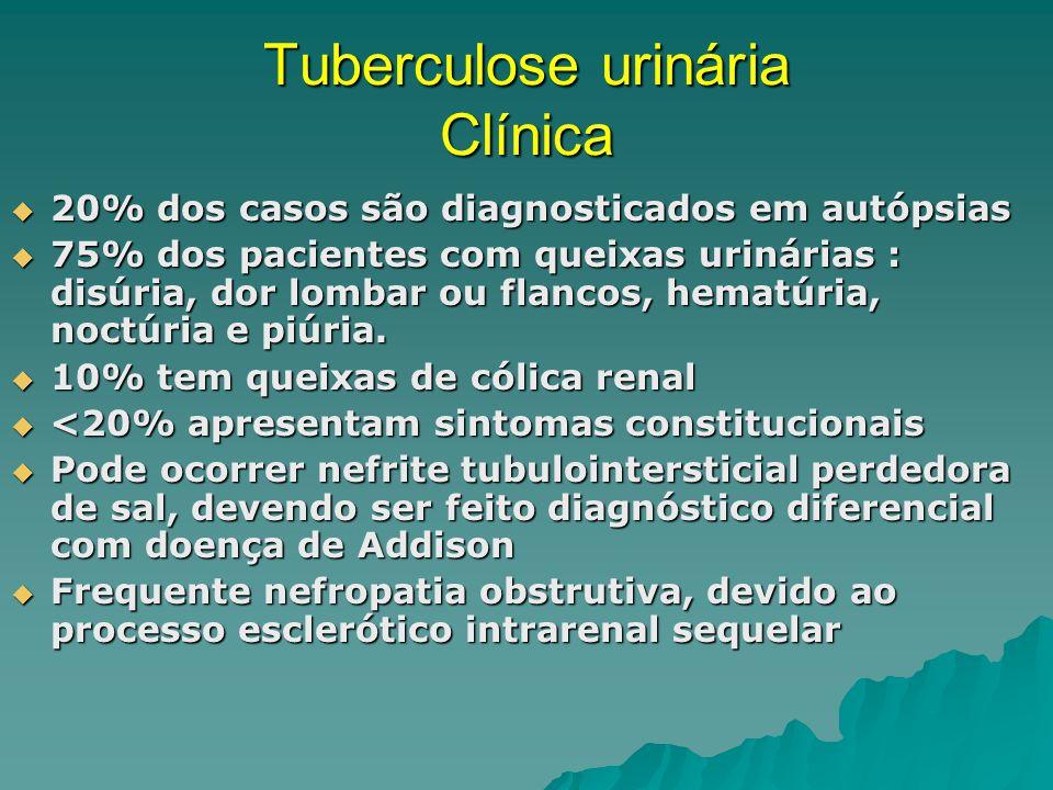 Tuberculose urinária Clínica <5% : Hipertensão arterial sistêmica <5% : Hipertensão arterial sistêmica 7-18% : Nefrolitíase 7-18% : Nefrolitíase 12-50% : Superinfecção com bactérias convencionais 12-50% : Superinfecção com bactérias convencionais Manifestações vesicais: capacidade vesical reduzida, refluxo vesicoureteral e predisposição a infecções Manifestações vesicais: capacidade vesical reduzida, refluxo vesicoureteral e predisposição a infecções Manifestações genitais: Epididimite com ou sem orquite, prostatite (como formas de infecção latente, mesmo após tratamento) Manifestações genitais: Epididimite com ou sem orquite, prostatite (como formas de infecção latente, mesmo após tratamento)