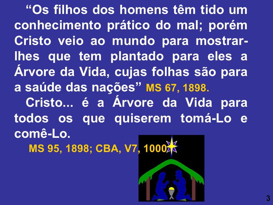 Os filhos dos homens têm tido um conhecimento prático do mal; porém Cristo veio ao mundo para mostrar- lhes que tem plantado para eles a Árvore da Vid