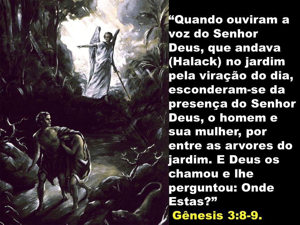 Quando ouviram a voz do Senhor Deus, que andava (Halack) no jardim pela viração do dia, esconderam-se da presença do Senhor Deus, o homem e sua mulher