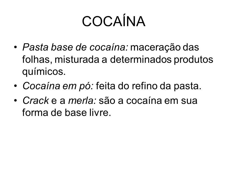 COCAÍNA Pasta base de cocaína: maceração das folhas, misturada a determinados produtos químicos. Cocaína em pó: feita do refino da pasta. Crack e a me