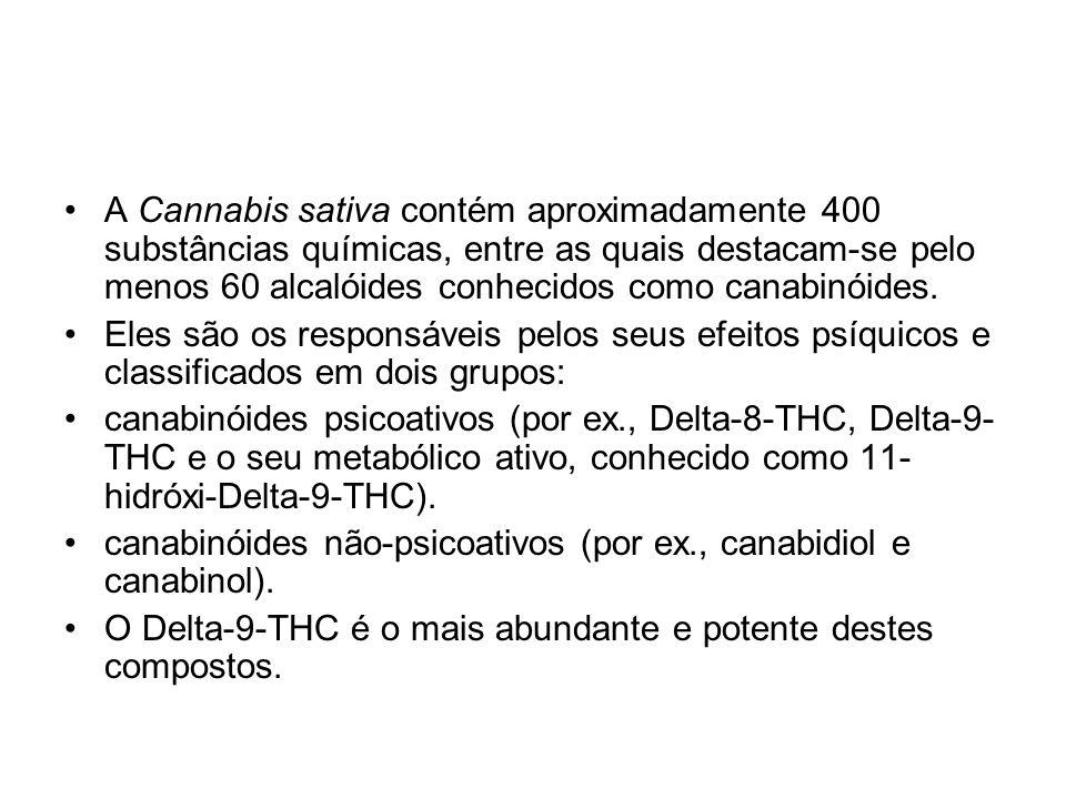 A Cannabis sativa contém aproximadamente 400 substâncias químicas, entre as quais destacam-se pelo menos 60 alcalóides conhecidos como canabinóides. E