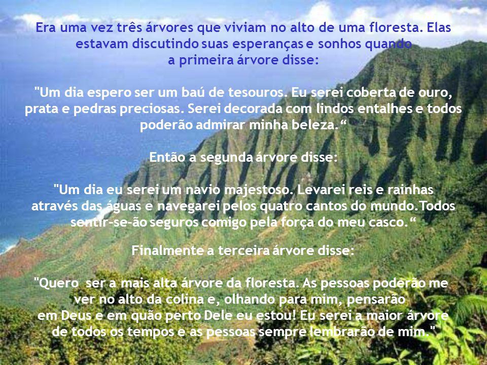 Era uma vez três árvores que viviam no alto de uma floresta. Elas estavam discutindo suas esperanças e sonhos quando a primeira árvore disse: