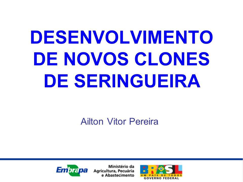 DESENVOLVIMENTO DE NOVOS CLONES DE SERINGUEIRA Ailton Vitor Pereira