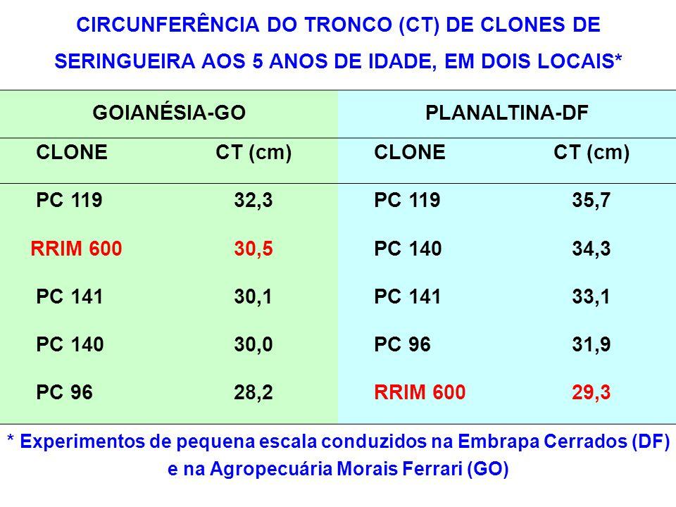 CIRCUNFERÊNCIA DO TRONCO (CT) DE CLONES DE SERINGUEIRA AOS 5 ANOS DE IDADE, EM DOIS LOCAIS* GOIANÉSIA-GOPLANALTINA-DF CLONECT (cm) CLONECT (cm) PC 119