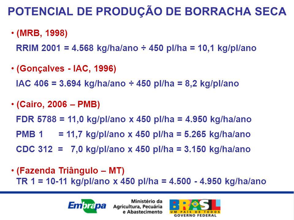 (MRB, 1998) RRIM 2001 = 4.568 kg/ha/ano ÷ 450 pl/ha = 10,1 kg/pl/ano (Gonçalves - IAC, 1996) IAC 406 = 3.694 kg/ha/ano ÷ 450 pl/ha = 8,2 kg/pl/ano (Ca
