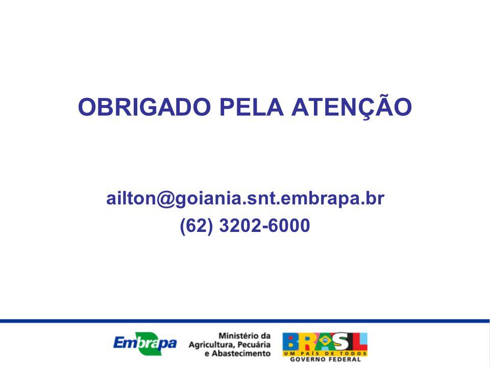 ailton@goiania.snt.embrapa.br (62) 3202-6000 OBRIGADO PELA ATENÇÃO