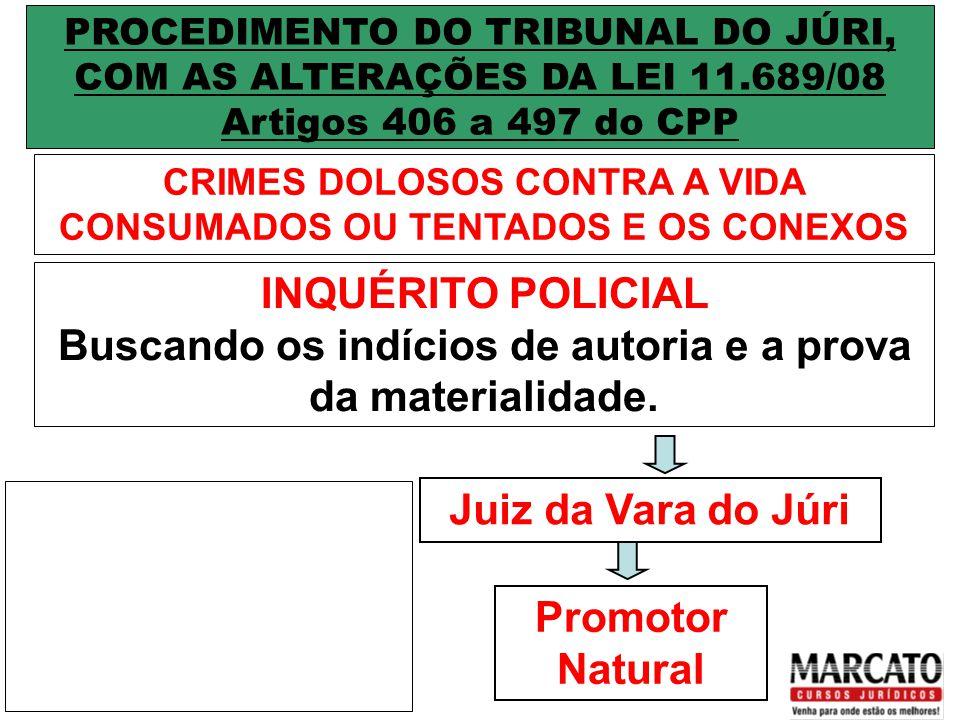 1ª FASE DO RITO DO JÚRI SUMÁRIO DA CULPA OU JUDICIUM ACCUSATIONIS INÍCIO: Recebimento da Denúncia TÉRMINO: Preclusão da Pronúncia