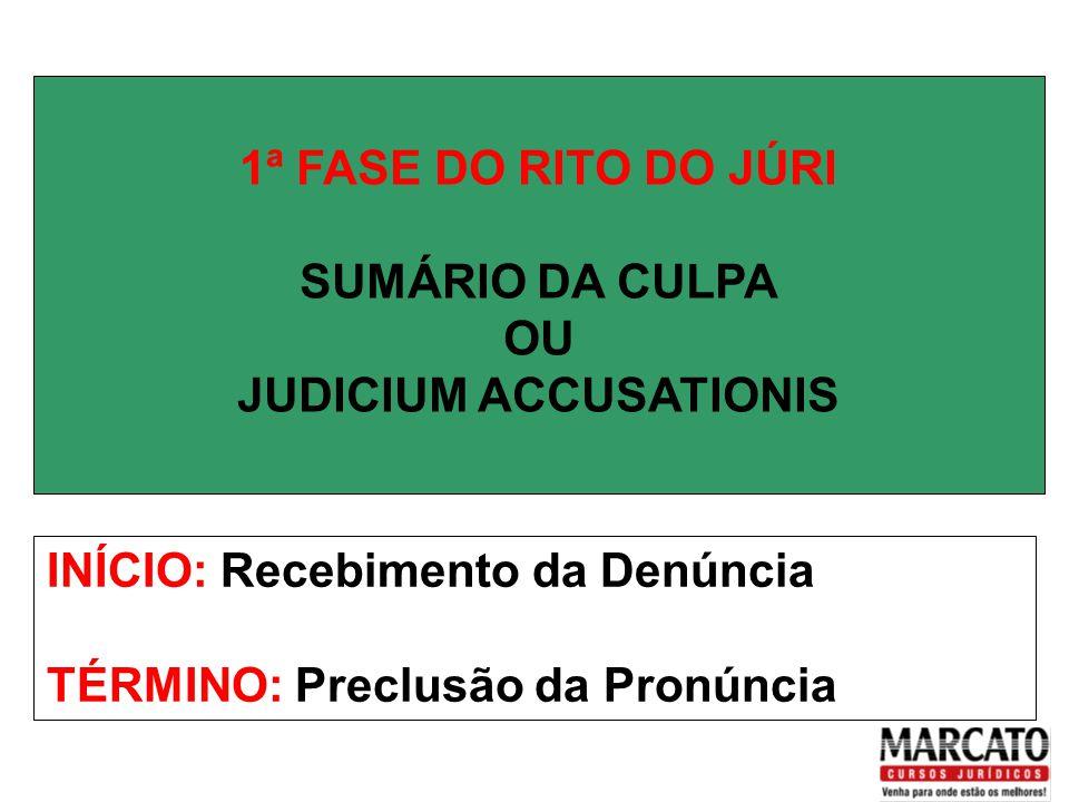 OFERECIMENTO DA DENÚNCIA Até 08 Testemunhas.