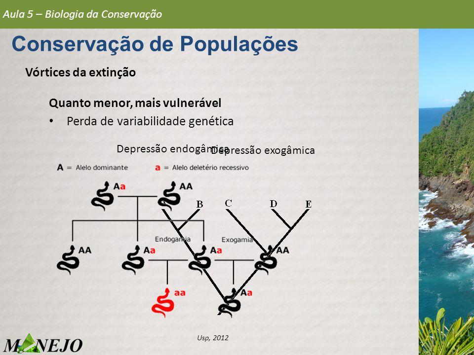 Vórtices da extinção Quanto menor, mais vulnerável Perda de variabilidade genética Aula 5 – Biologia da Conservação Conservação de Populações Usp, 201
