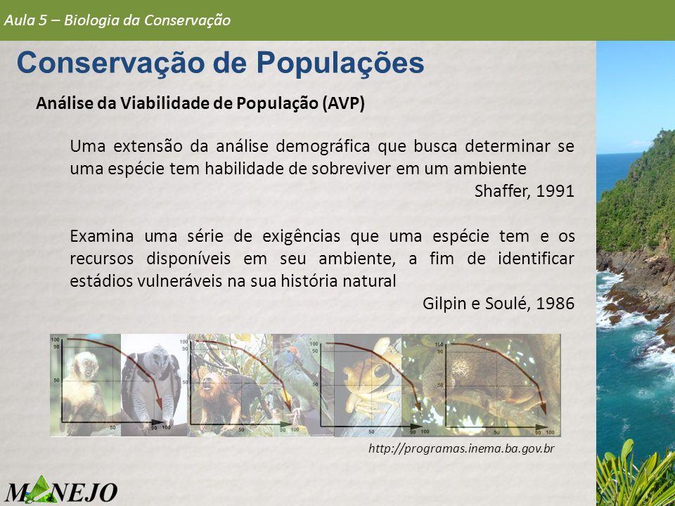 Análise da Viabilidade de População (AVP) Aula 5 – Biologia da Conservação Conservação de Populações http://programas.inema.ba.gov.br Uma extensão da