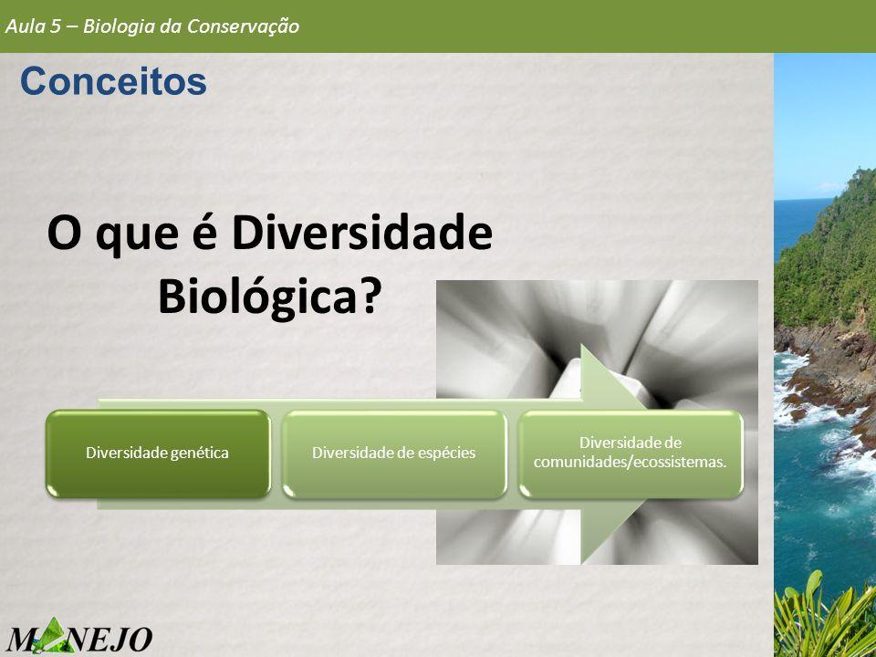 Conceitos O que é Diversidade Biológica? Aula 5 – Biologia da Conservação Diversidade genéticaDiversidade de espécies Diversidade de comunidades/ecoss