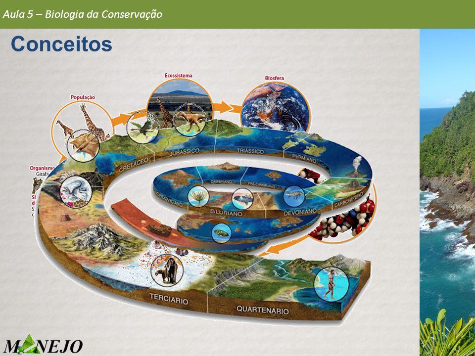 Vórtices da extinção Quanto menor, mais vulnerável Variação demográfica Nº indivíduos X Capacidade de carga Aula 5 – Biologia da Conservação Conservação de Populações Fonte: www.cursoanglo.com.br