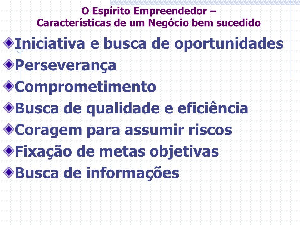 O Espírito Empreendedor – Características de um Negócio bem sucedido Iniciativa e busca de oportunidades Perseverança Comprometimento Busca de qualida