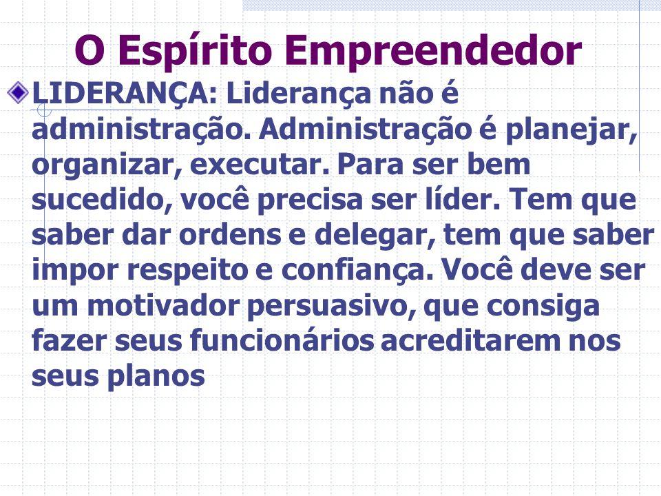 O Espírito Empreendedor LIDERANÇA: Liderança não é administração. Administração é planejar, organizar, executar. Para ser bem sucedido, você precisa s