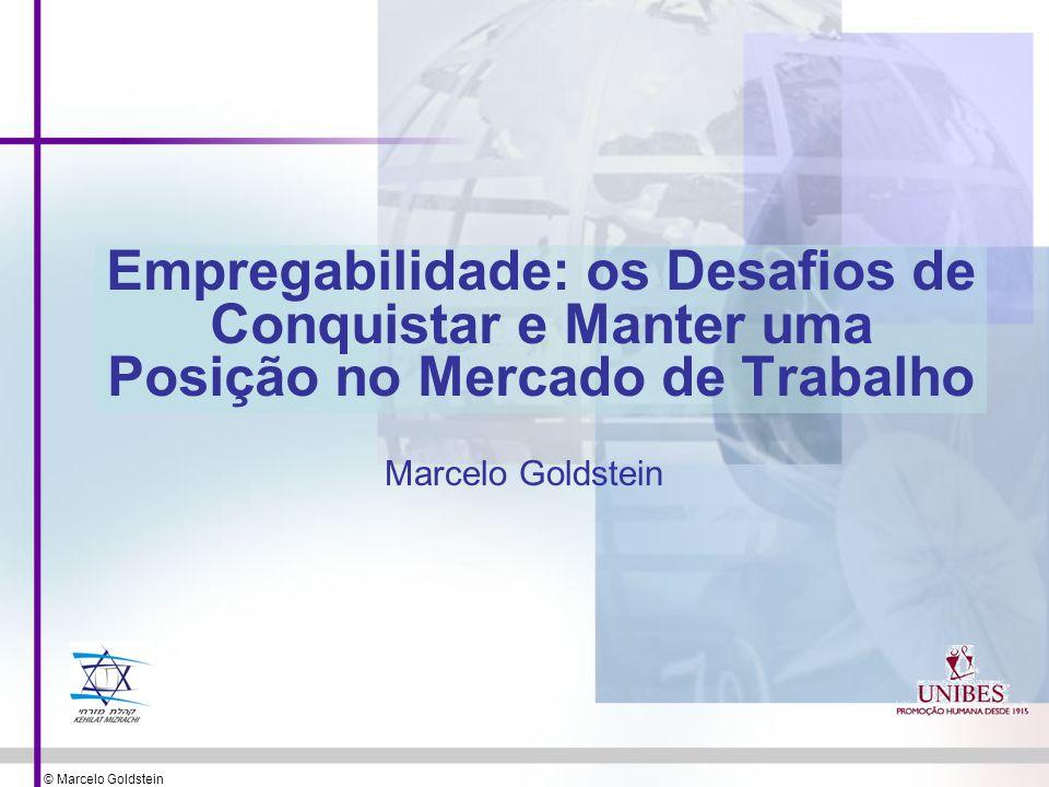 © Marcelo Goldstein Empregabilidade: os Desafios de Conquistar e Manter uma Posição no Mercado de Trabalho Marcelo Goldstein