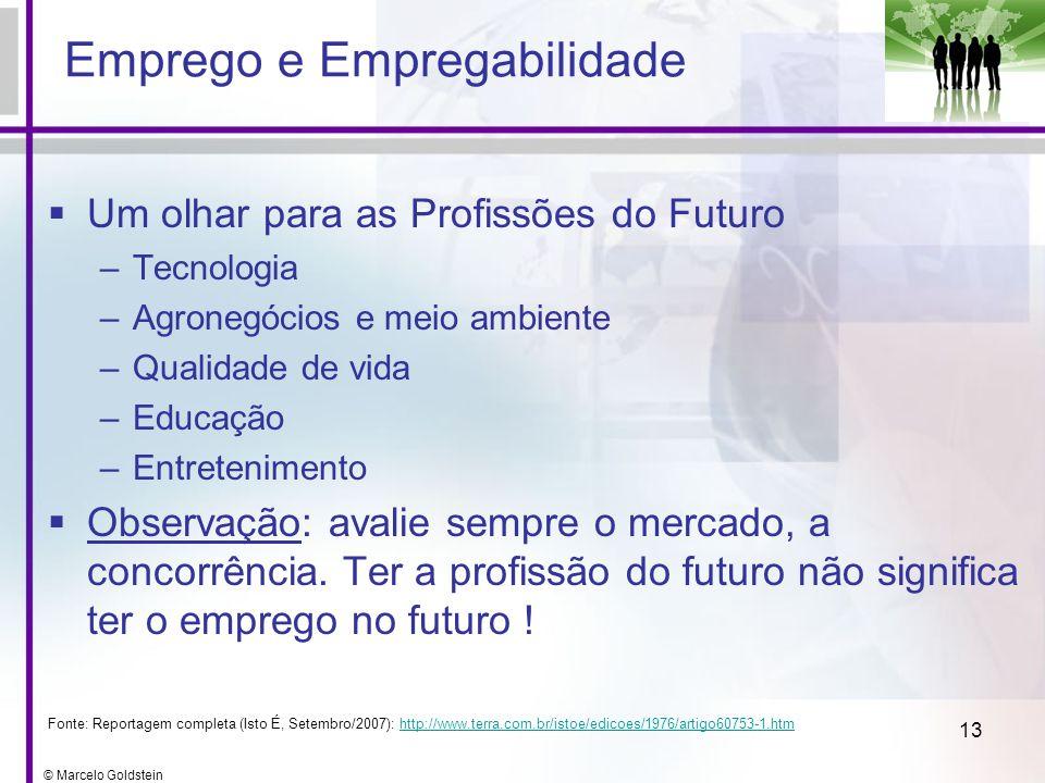© Marcelo Goldstein 13 Emprego e Empregabilidade Um olhar para as Profissões do Futuro –Tecnologia –Agronegócios e meio ambiente –Qualidade de vida –E
