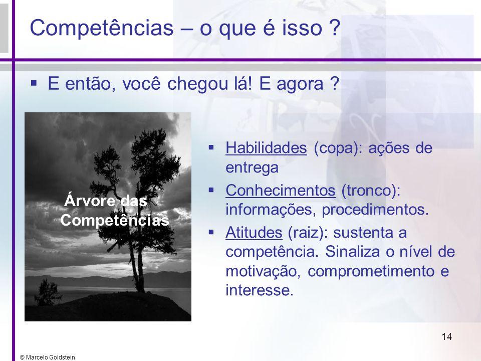 © Marcelo Goldstein 14 Competências – o que é isso ? E então, você chegou lá! E agora ? Árvore das Competências Habilidades (copa): ações de entrega C