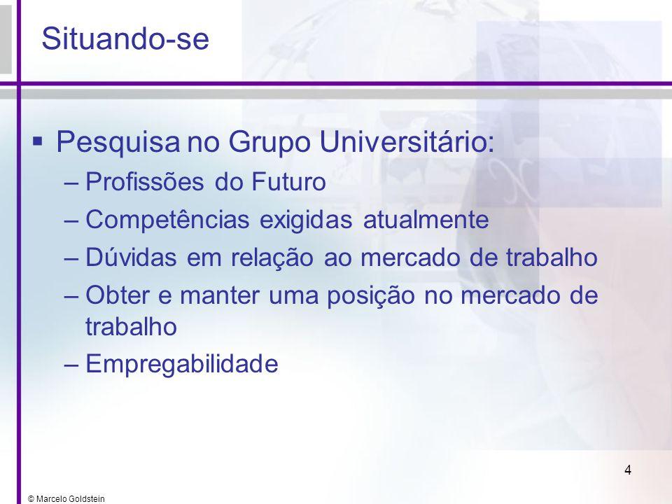© Marcelo Goldstein 4 Situando-se Pesquisa no Grupo Universitário: –Profissões do Futuro –Competências exigidas atualmente –Dúvidas em relação ao merc