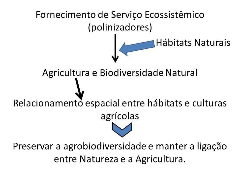 Fornecimento de Serviço Ecossistêmico (polinizadores) Hábitats Naturais Agricultura e Biodiversidade Natural Relacionamento espacial entre hábitats e culturas agrícolas Preservar a agrobiodiversidade e manter a ligação entre Natureza e a Agricultura.