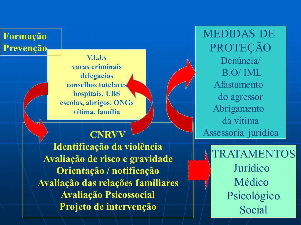 V.I.J.s varas criminais delegacias conselhos tutelares hospitais, UBS escolas, abrigos, ONGs vítima, família CNRVV Identificação da violência Avaliaçã