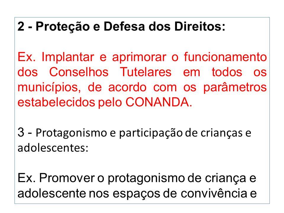 2 - Proteção e Defesa dos Direitos: Ex. Implantar e aprimorar o funcionamento dos Conselhos Tutelares em todos os municípios, de acordo com os parâmet