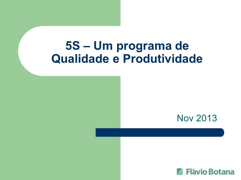 5S – Um programa de Qualidade e Produtividade Nov 2013