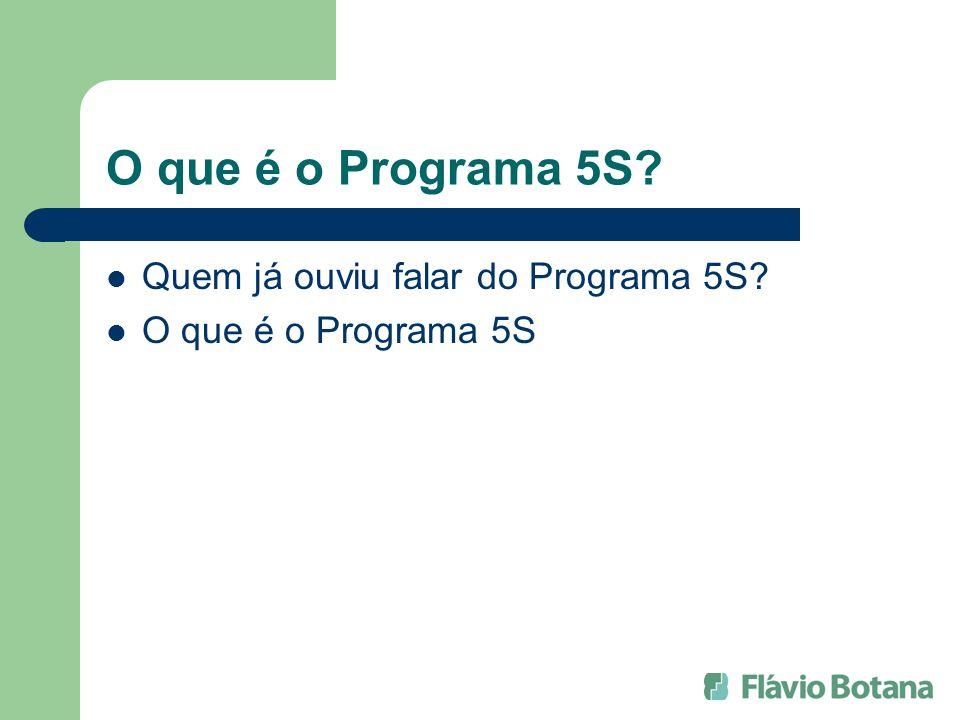 O que é o Programa 5S? Quem já ouviu falar do Programa 5S? O que é o Programa 5S