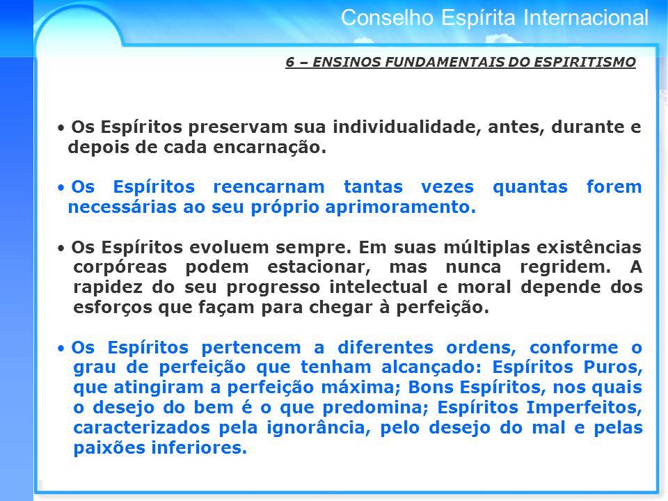 Conselho Espírita Internacional 6 – ENSINOS FUNDAMENTAIS DO ESPIRITISMO Os Espíritos preservam sua individualidade, antes, durante e depois de cada encarnação.