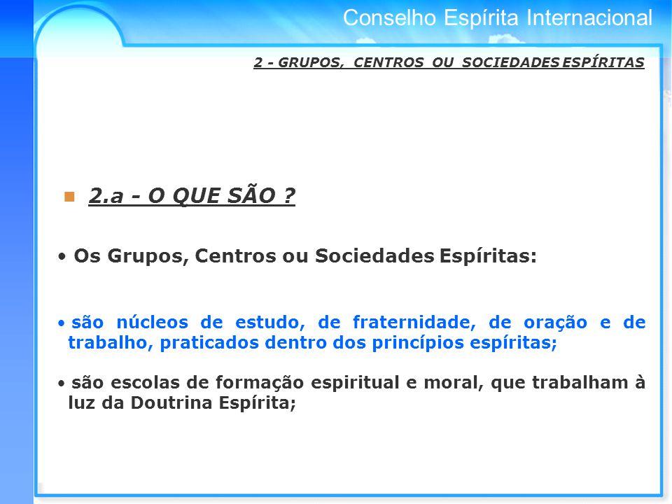 Conselho Espírita Internacional 2.a - O QUE SÃO .