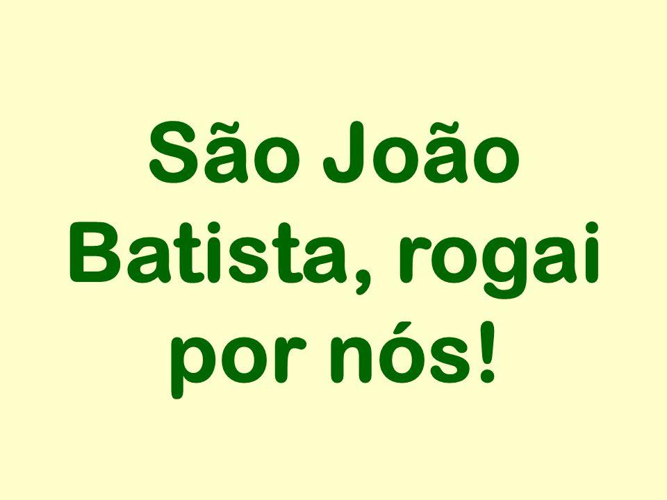 São João Batista, rogai por nós!