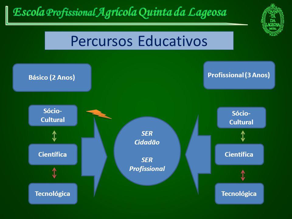Percursos Educativos Básico (2 Anos) Profissional (3 Anos) Sócio- Cultural Científica Tecnológica SER Cidadão SER Profissional