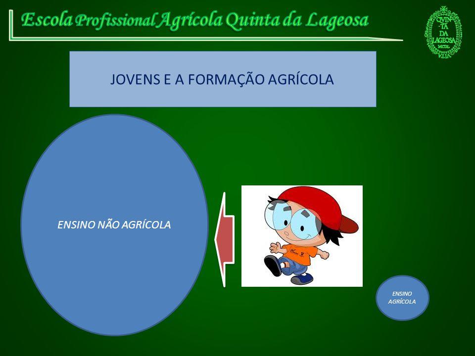 JOVENS E A FORMAÇÃO AGRÍCOLA ENSINO NÃO AGRÍCOLA ENSINO AGRÍCOLA