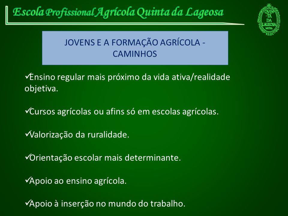 JOVENS E A FORMAÇÃO AGRÍCOLA - CAMINHOS Ensino regular mais próximo da vida ativa/realidade objetiva. Cursos agrícolas ou afins só em escolas agrícola