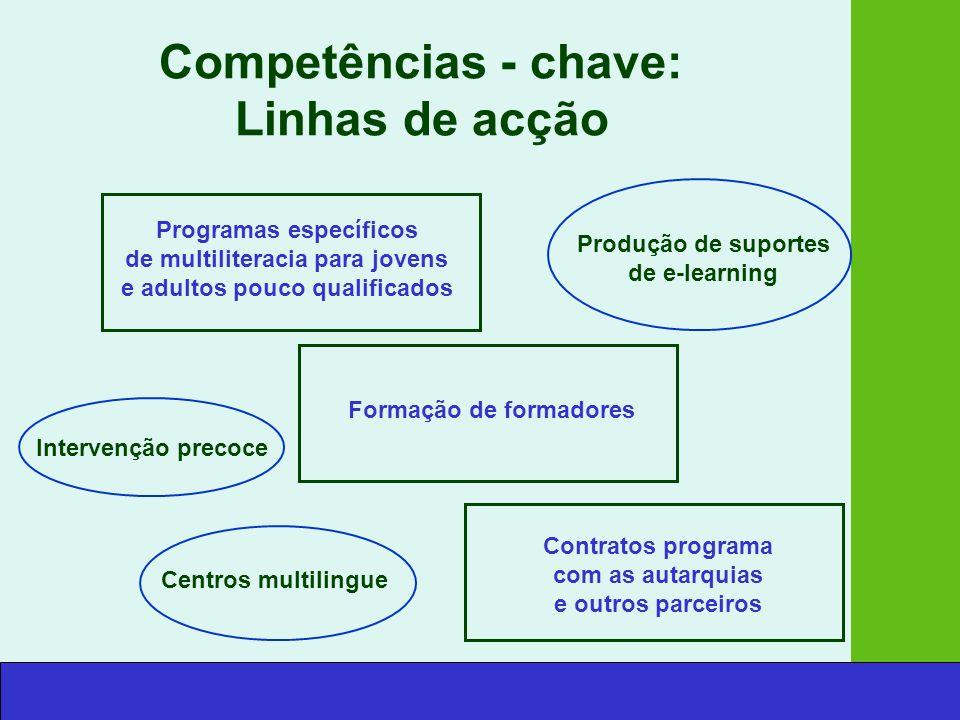 Competências - chave: Linhas de acção Programas específicos de multiliteracia para jovens e adultos pouco qualificados Produção de suportes de e-learning Formação de formadores Intervenção precoce Centros multilingue Contratos programa com as autarquias e outros parceiros