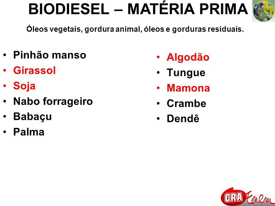 BIODIESEL – MATÉRIA PRIMA Reação de transesterificação de um óleo vegetal